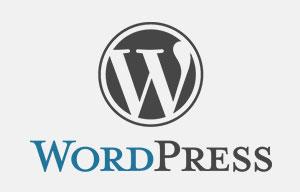 Chino Web Design Services WordPress Logo